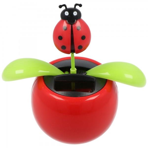 Solar Wiggle fleur en pot avec une coccinelle comme une fleur