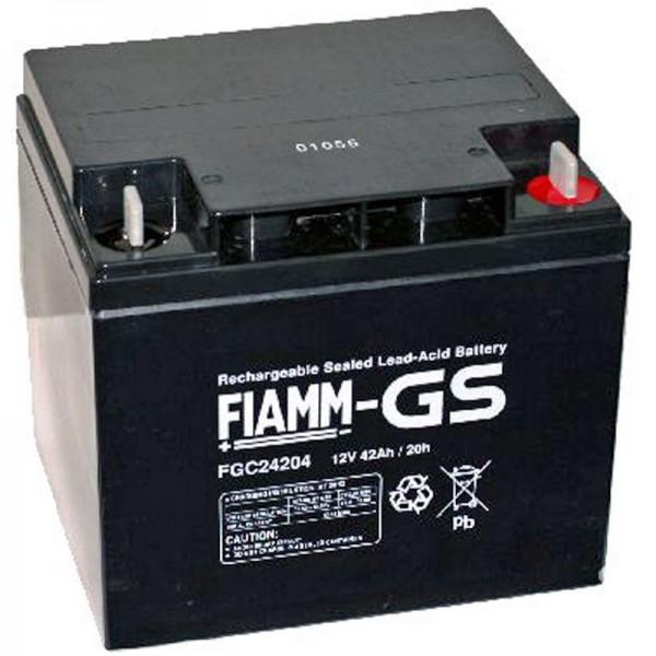 Fiamm FGC24207 Batterie avec connexion à vis M6 12Volt 42Ah