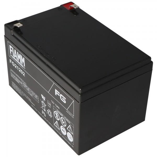 Fiamm FG21202 Batterie 12Ah