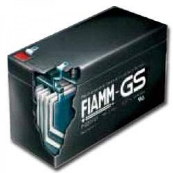 Batterie au plomb Fiamm MonoLite 2SLA300 PB 2Volt 300Ah